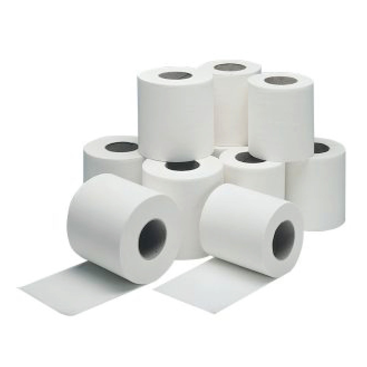 Toilet Rolls The Vet Store