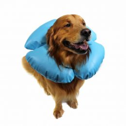 Inflatable Recovery Collar