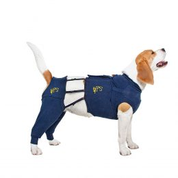 Medical Pet Shirt: Hind Leg